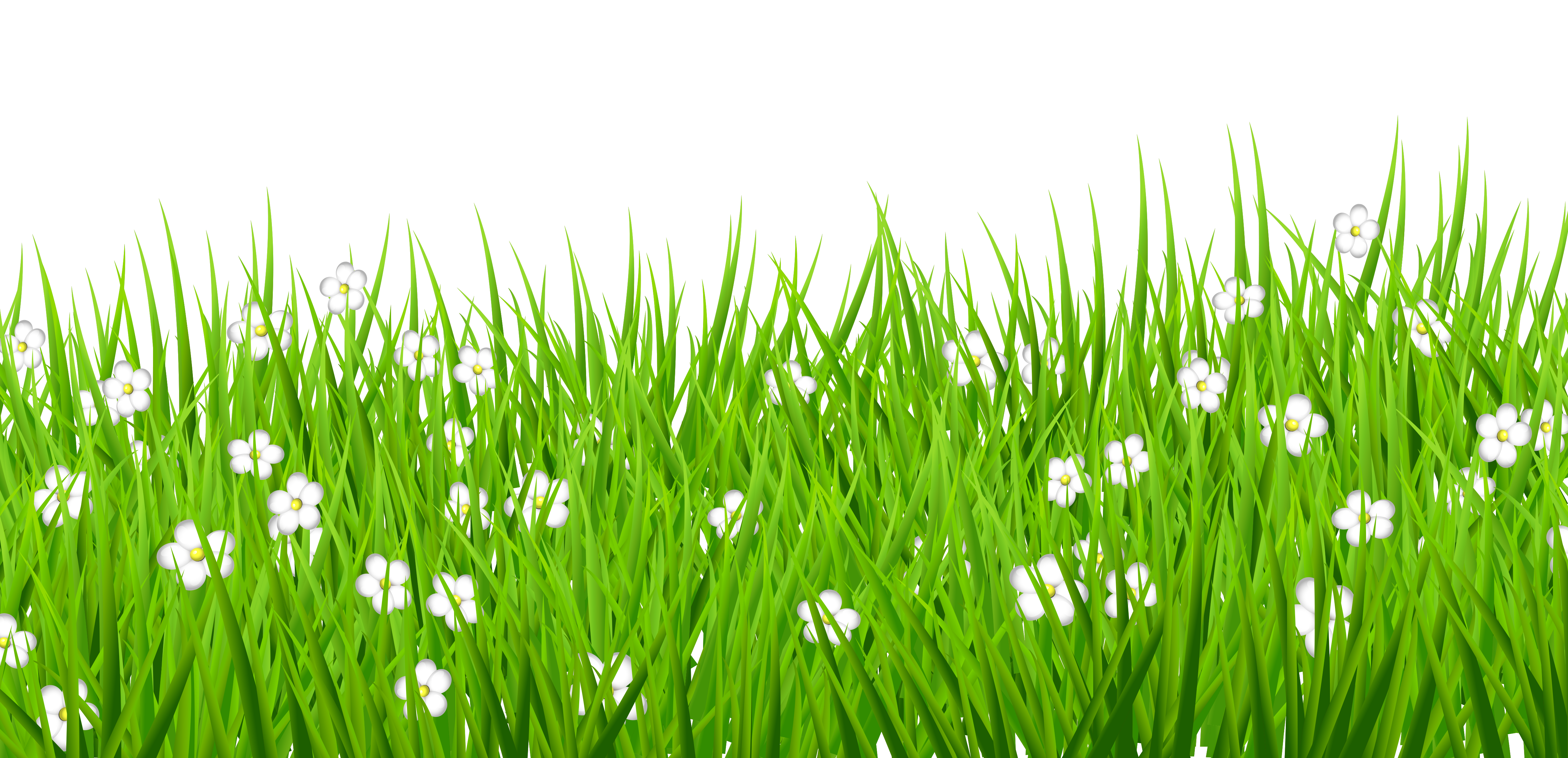 Clear background flower clipart clipart freeuse stock Grass graphic clipart - ClipartFest clipart freeuse stock