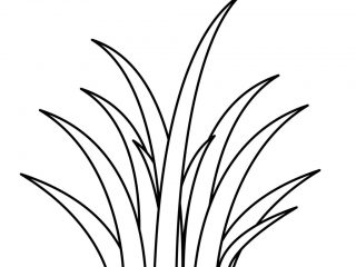 Grass outline clipart png royalty free Grass Outline | Free download best Grass Outline on ClipArtMag.com png royalty free