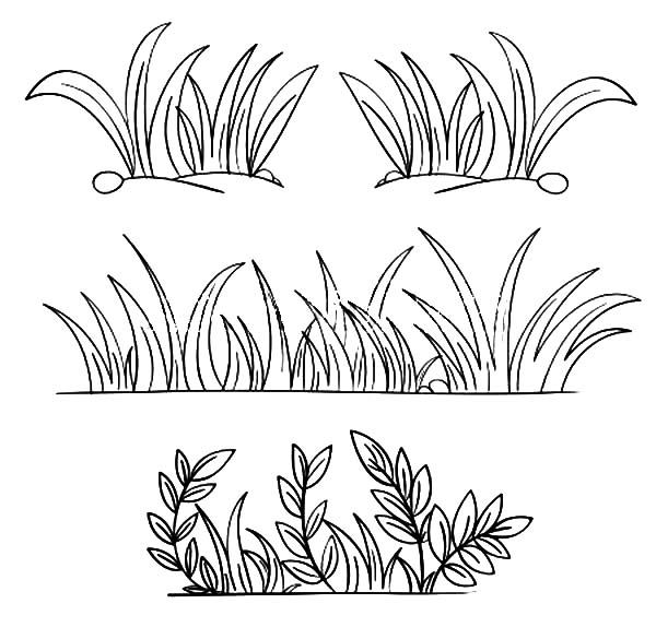 Grass outline clipart vector freeuse Grass, : Grass Grow so Well Coloring Pages | Paint in 2019 | Grass ... vector freeuse
