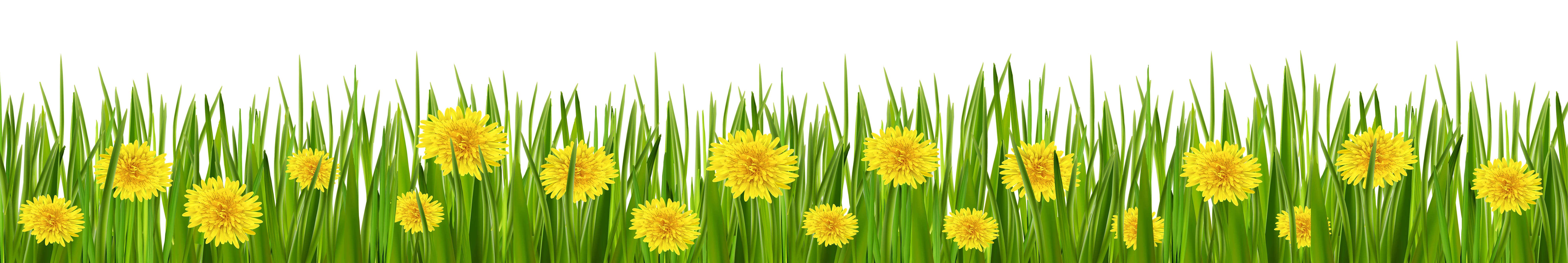 Grass sun clipart vector black and white Grass and Dandelions PNG Clip Art - Best WEB Clipart vector black and white