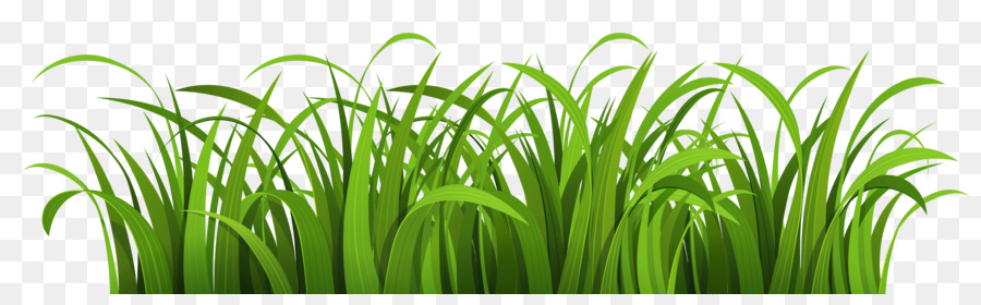 Grass vector clipart vector royalty free Grass Background png download - 7500*2250 - Free Transparent Cartoon ... vector royalty free