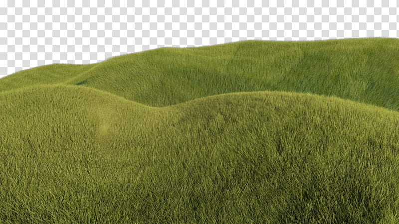 Grassy background clipart clip art royalty free download Grassy Hills, green grass field transparent background PNG clipart ... clip art royalty free download