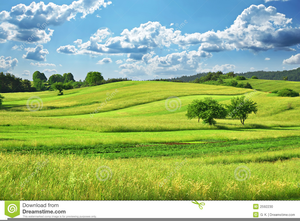 Grassy Field Clipart | Free Images at Clker.com - vector clip art ... clip black and white