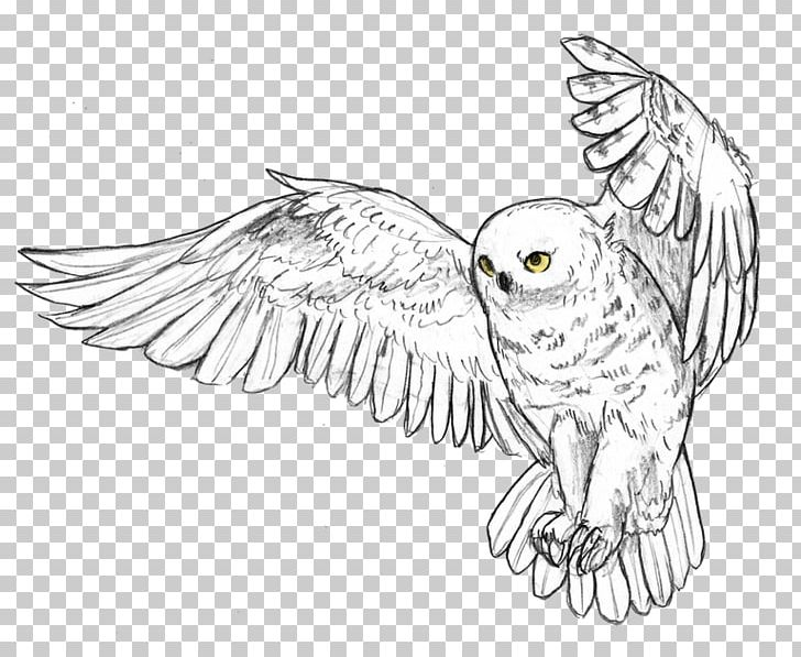 Great grey owl clipart royalty free download Snowy Owl Bird Great Horned Owl Drawing PNG, Clipart, Animal ... royalty free download