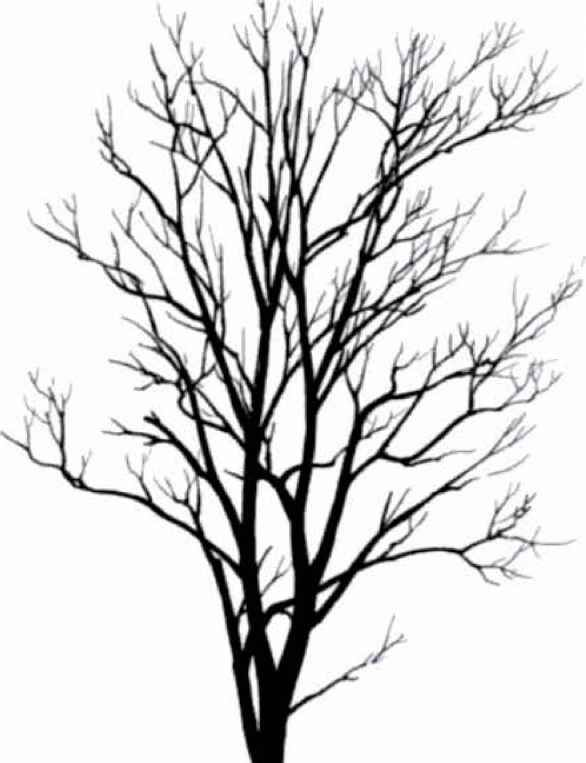Great tree small and the small tree great clipart picture royalty free download Tree Silhouettes Small Tree - ClipArt Best - ClipArt Best | graphics ... picture royalty free download
