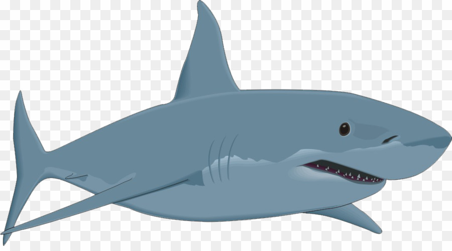 Great white clipart download Great White Shark Clip Art PNG Great White Shark Clipart download ... download