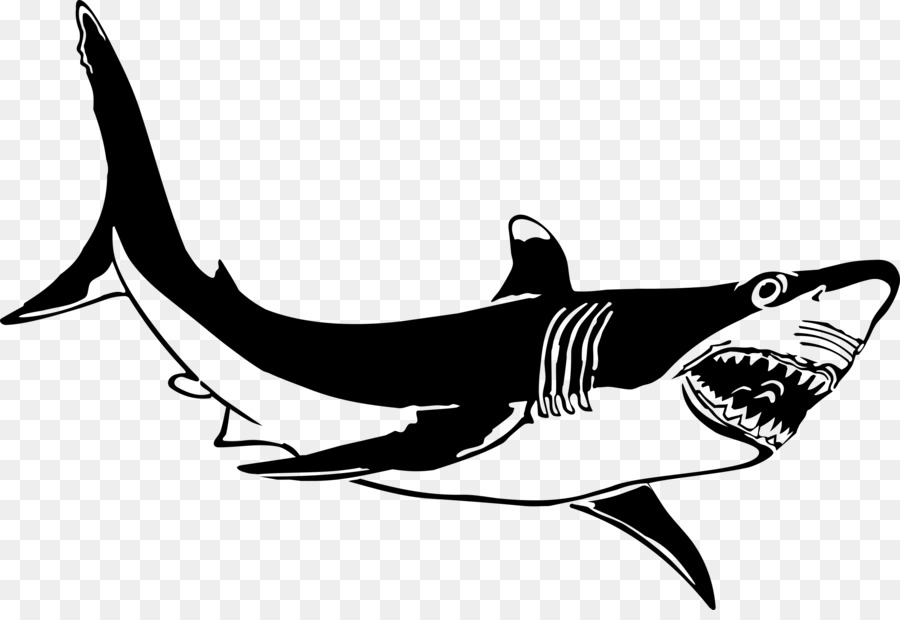 Great white clipart picture library stock Great White Shark Background clipart - Fish, transparent clip art picture library stock