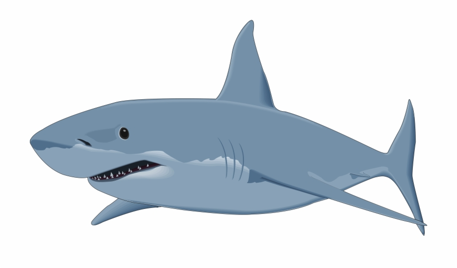 Great white clipart svg library stock Shark Png Clipart Image - Great White Shark Clipart Free PNG Images ... svg library stock