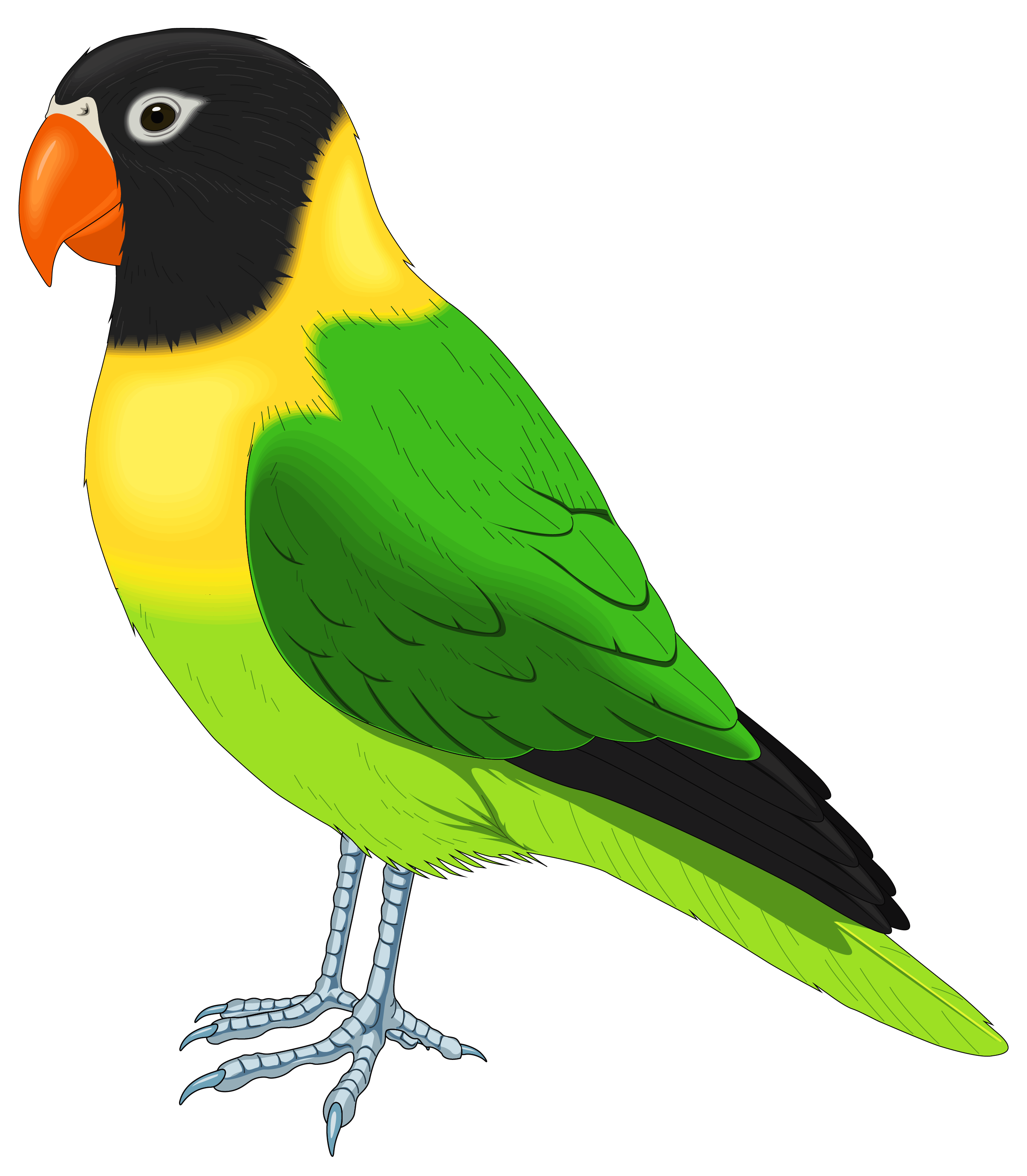 Green and yellow clipart png freeuse library Green and Yellow Bird PNG Clipart Image | Gallery Yopriceville ... png freeuse library