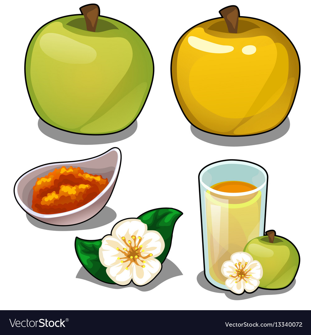 Green apple juice clipart vector stock Yellow and green apple juice jam and flower vector stock