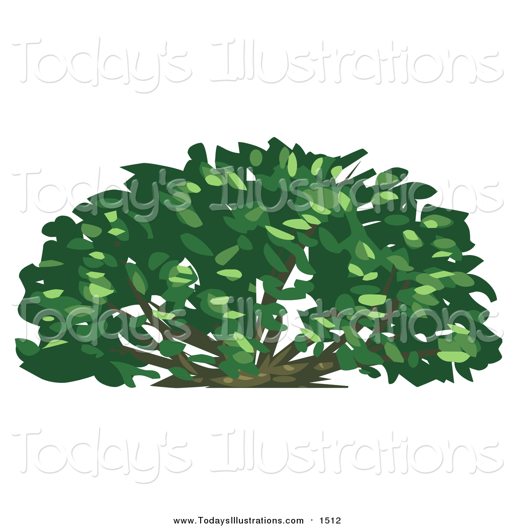 Shurbs clipart jpg freeuse library Clipart of a Lush Green Shrub Plant by Tonis Pan - #1512 jpg freeuse library