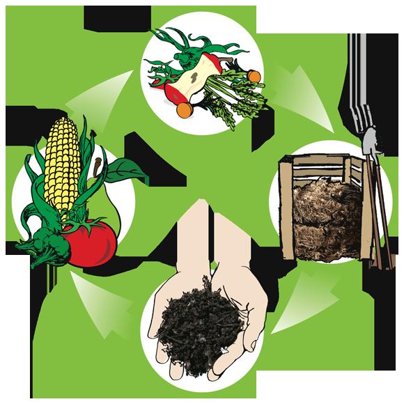 Green compost apple clipart vector library download Transform Trash into Compost - Civic Garden Center vector library download