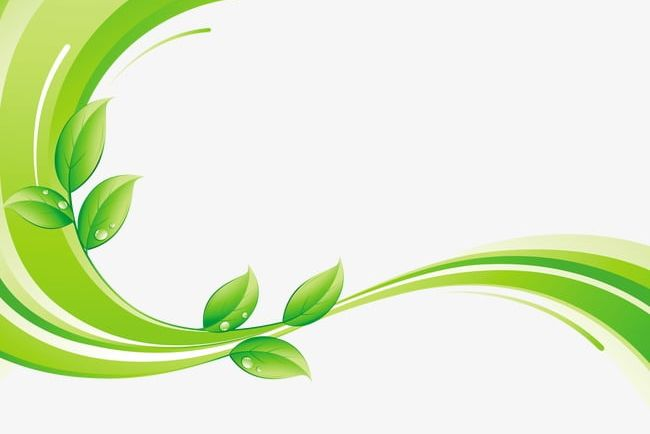 Green decorative clipart clipart freeuse stock Green Leaf With Decorative Lines PNG, Clipart, Decoration ... clipart freeuse stock