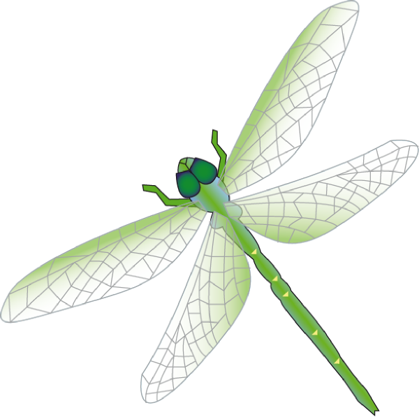 Green dragon fly cliparts graphic free library Dragon Fly Clip Art at Clker.com - vector clip art online, royalty ... graphic free library