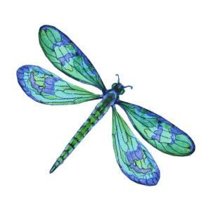 Green dragon fly cliparts picture freeuse library Green dragonfly clipart - ClipartFest | Dragonflies | Dragonfly ... picture freeuse library