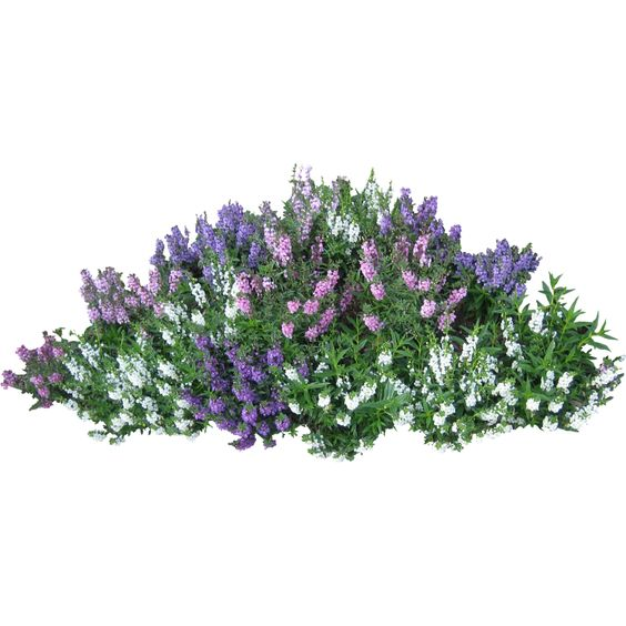 Green flower bed clipart png png freeuse Flower Garden Clip Art Free | Скачать PNG фото в высоком ... png freeuse