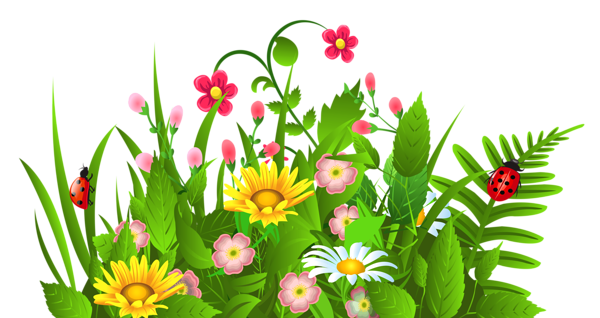 Green flower bed clipart png vector 17 Best images about clipart flowers on Pinterest | Spring, Flower ... vector