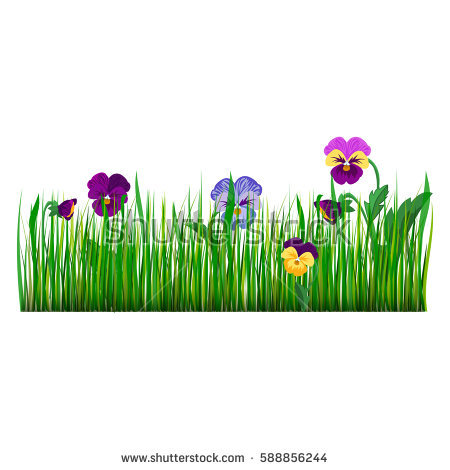 Green flower bed clipart png clip art library library Pansies Stock Images, Royalty-Free Images & Vectors | Shutterstock clip art library library