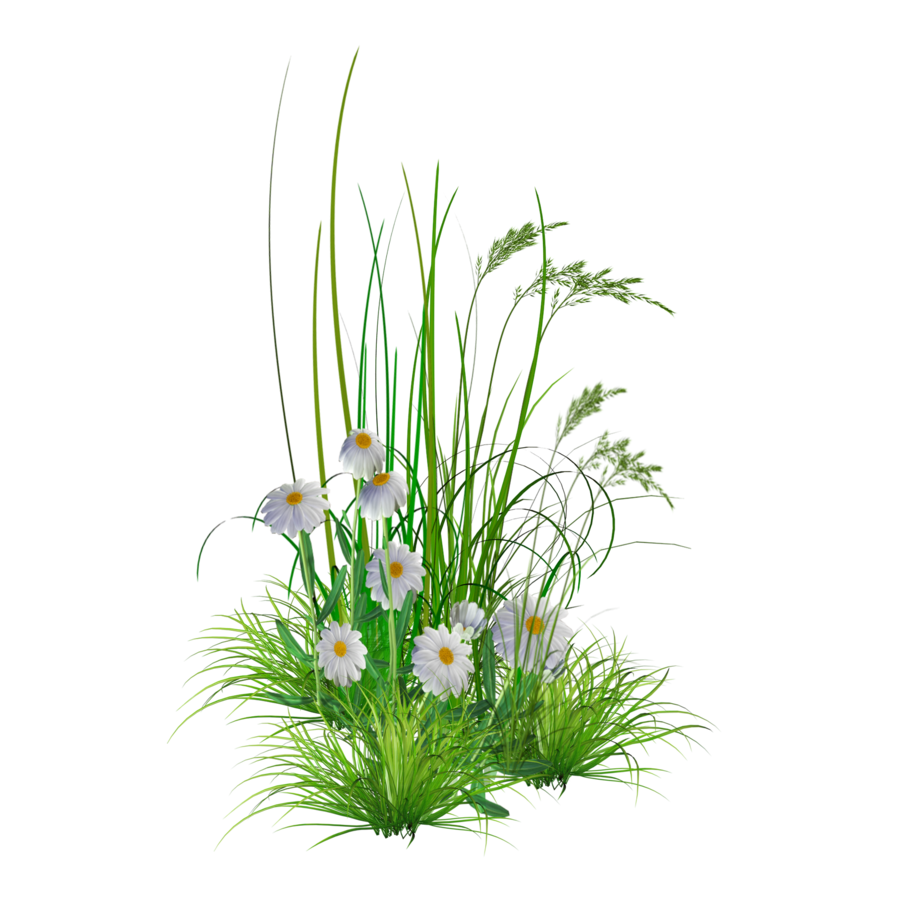 Green flower bed clipart png jpg free library Green flower bed clipart png - ClipartFest jpg free library