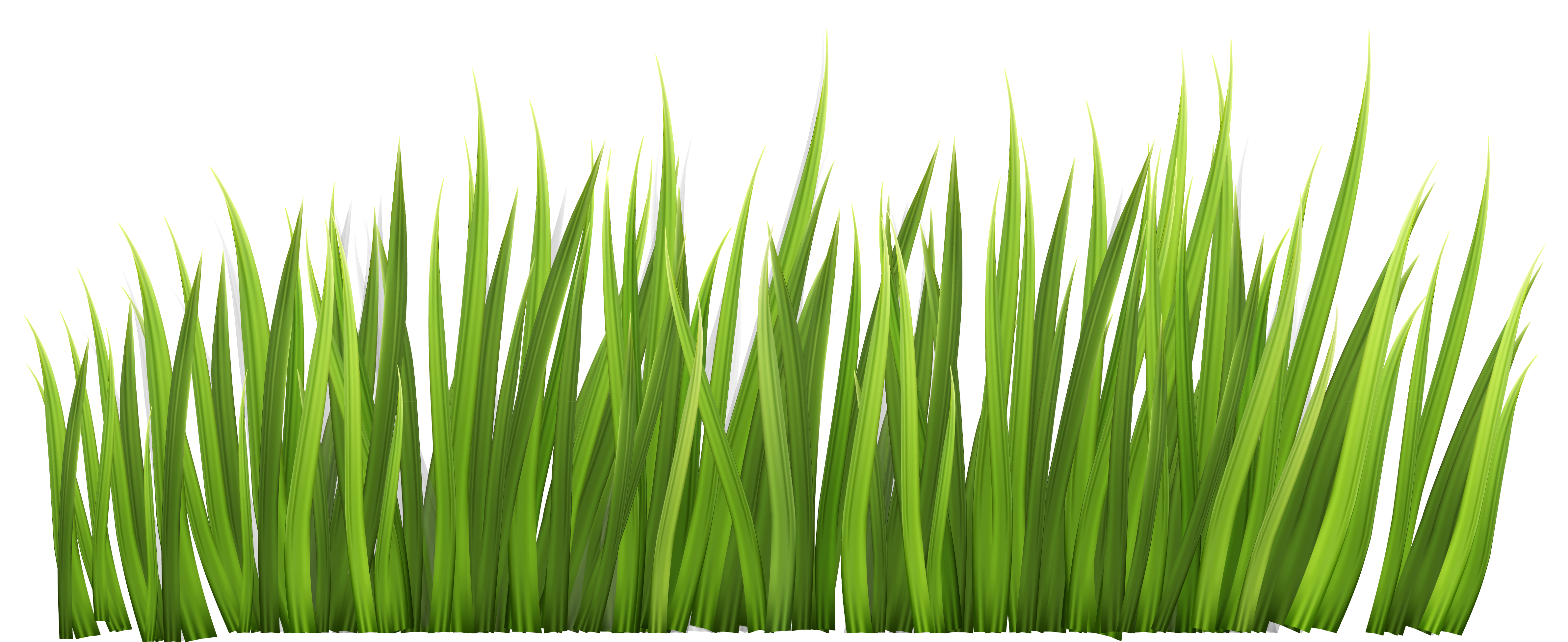 Green grass clipart vector royalty free stock Pin by ☆\\ Jeanie on Croque Madame . . . . . ..T- Monsieur   Grass ... vector royalty free stock