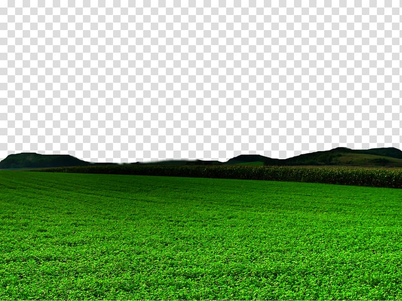 Plains grassland landscape black and white clipart image free Green grass field, Lawn Green Grasses Grassland , Nature Free ... image free