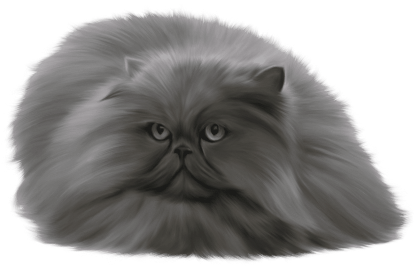 Grey cat clipart royalty free download grey cat png - Free PNG Images | TOPpng royalty free download
