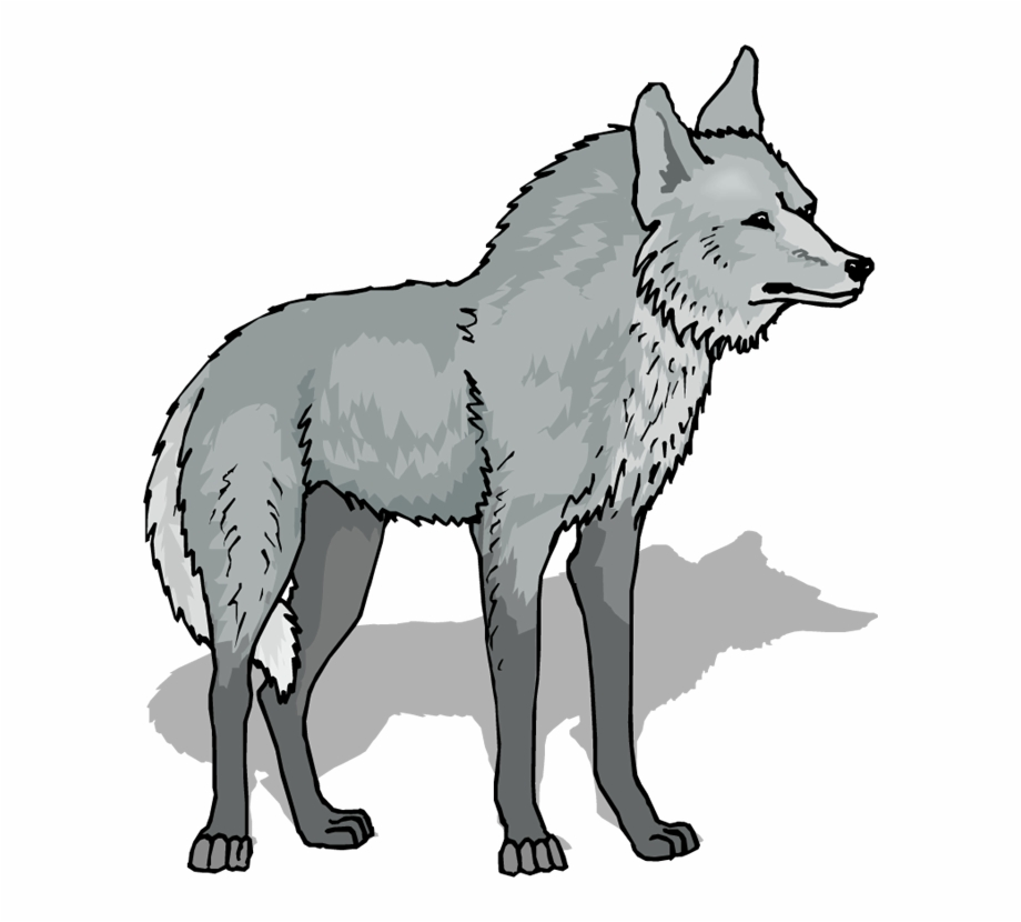 Wolf dog clipart transparent image free download Wolf Png Image Clipart - Grey Wolf Clipart, Transparent Png Download ... image free download
