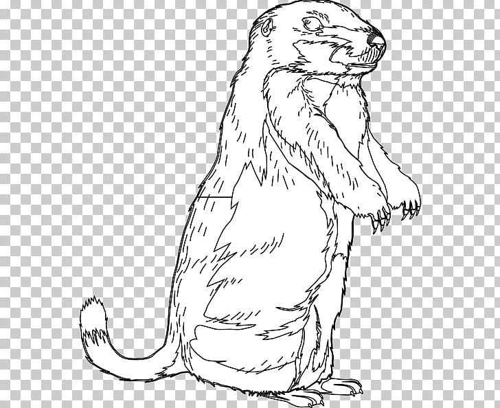 Groundhog and his shadow black and white clipart picture stock The Groundhog Groundhog Day Open PNG, Clipart, Artwork, Beaver ... picture stock