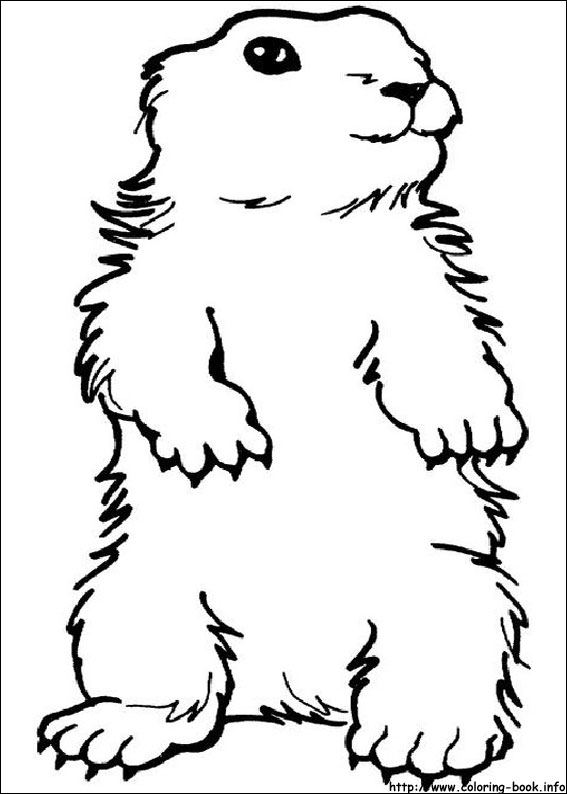 Groundhog black and white clipart clip transparent download Black and white groundhog clipart kid 4 - Cliparting.com clip transparent download
