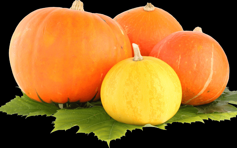 Sad pumpkin clipart svg free Group Pumpkin transparent PNG - StickPNG svg free