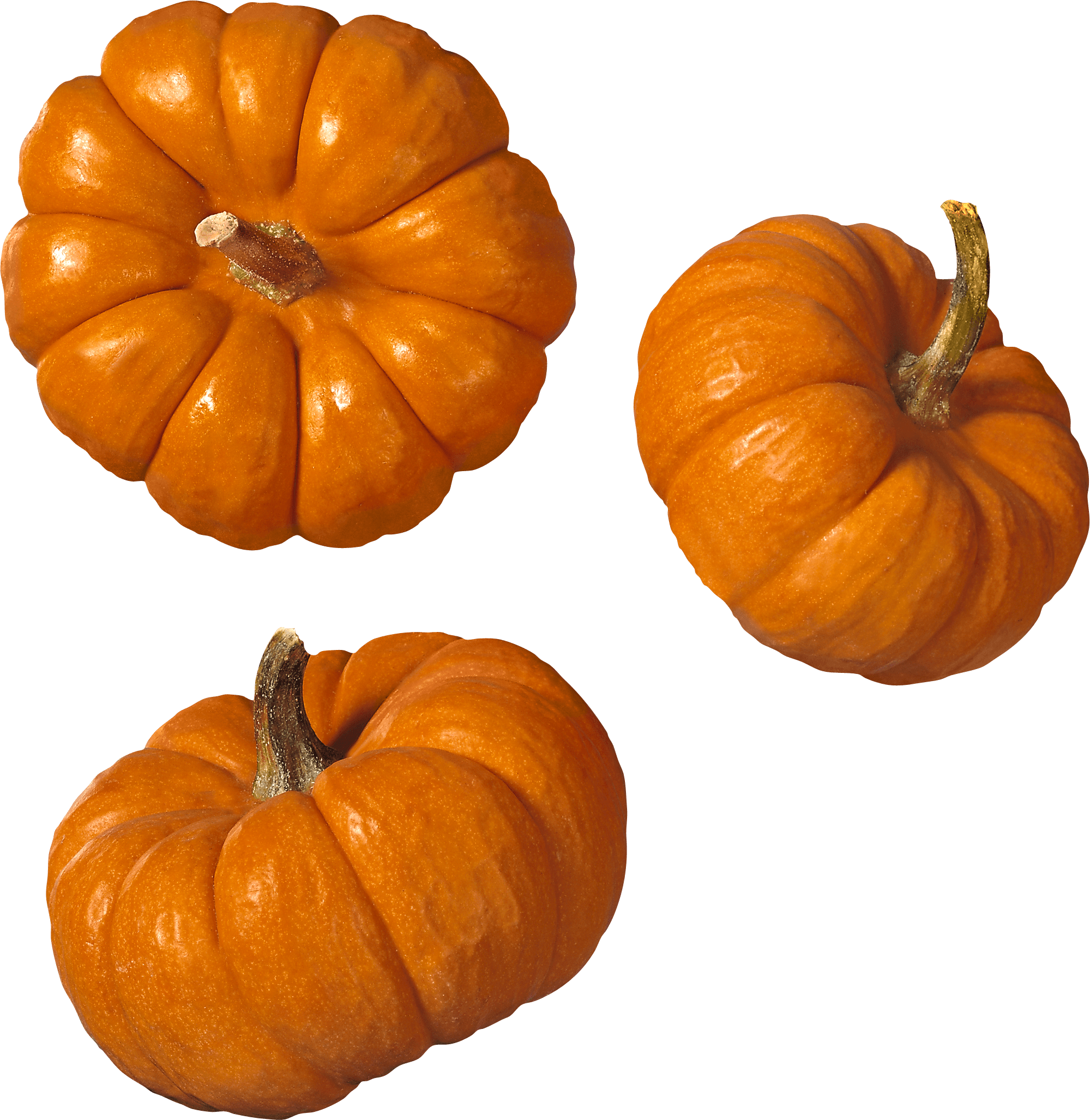 Group of pumpkin clipart png black and white Trio Pumpkin transparent PNG - StickPNG png black and white