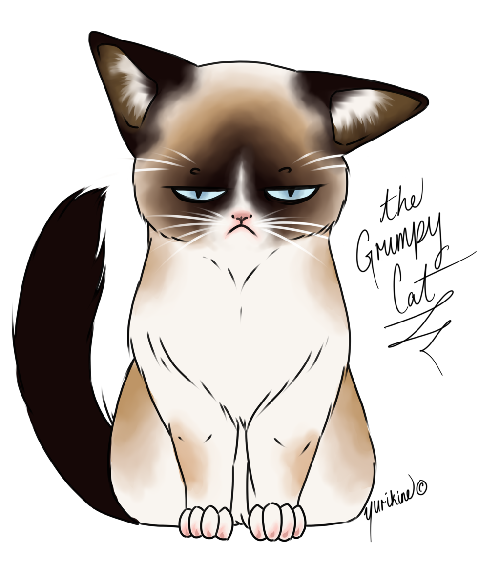 Grumpy cat face clipart jpg freeuse stock 28+ Collection of Kawaii Grumpy Cat Drawing   High quality, free ... jpg freeuse stock