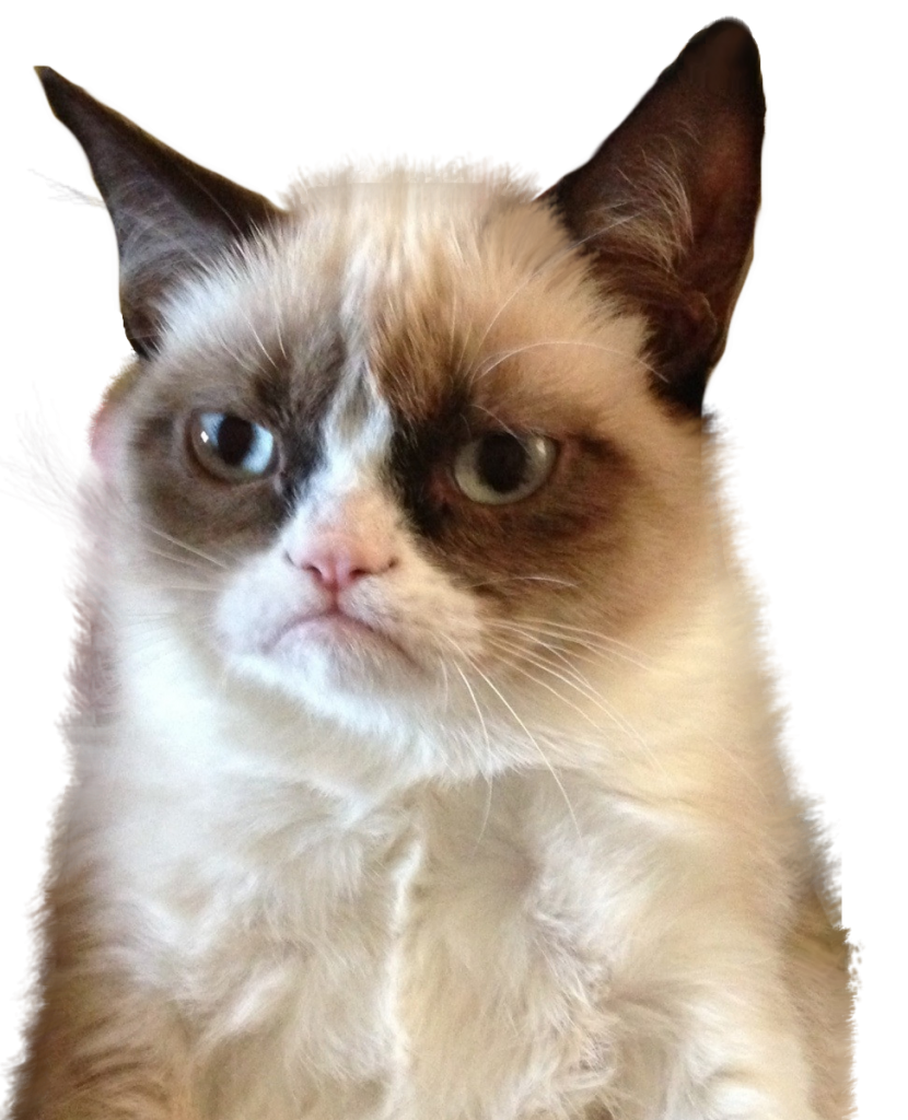 Grumpy cat face clipart image krystenfos – living life one clumsy step at a time image