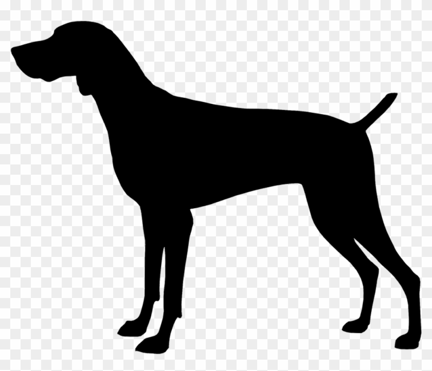 Gsp clipart clip free Clipart Dogs Gsp - Horse Side View Silhouette, HD Png Download ... clip free
