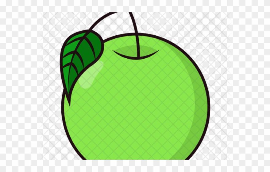 Guava images clipart clip library download Guava Clipart Fruit Individual - Guava Clip Art - Png Download ... clip library download