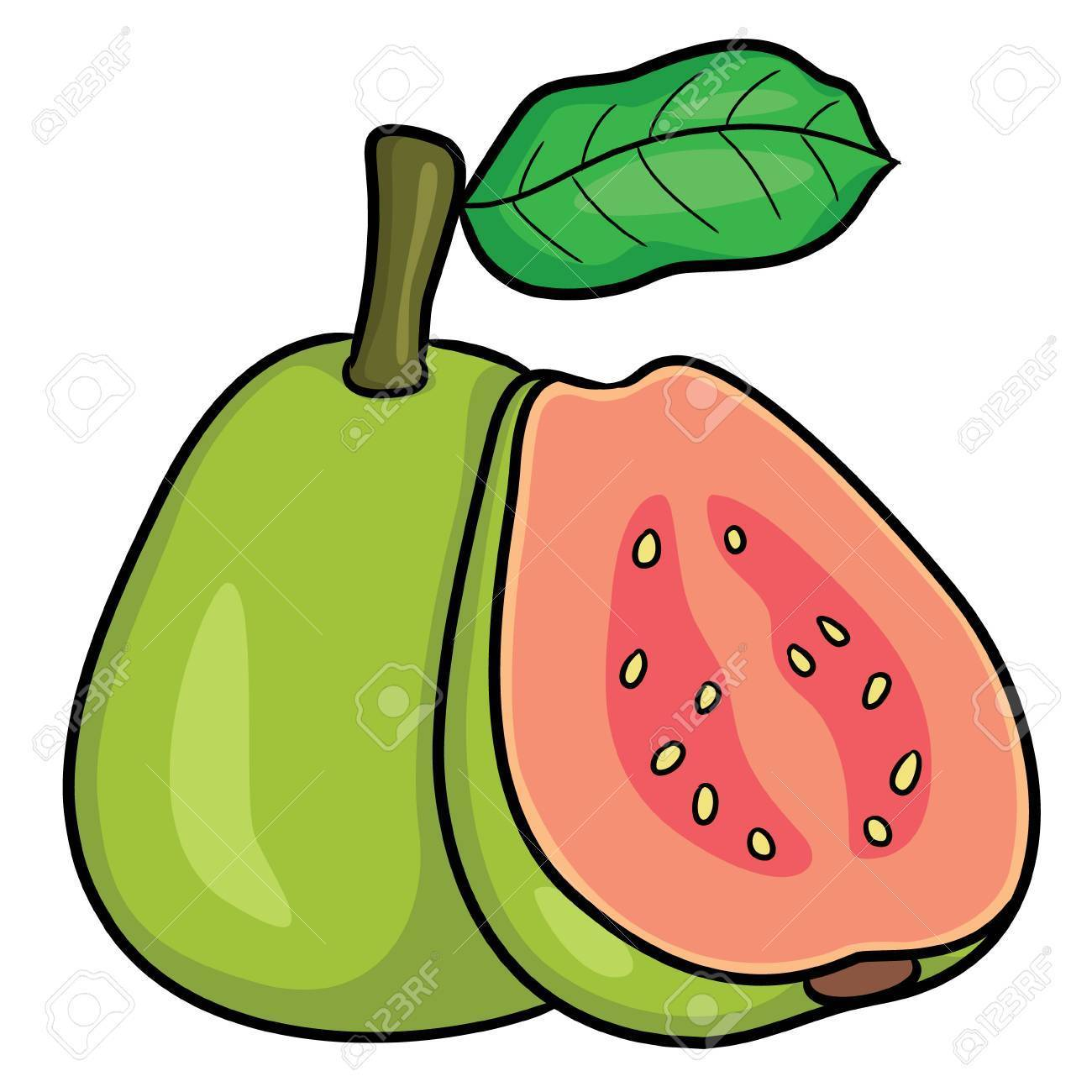 Guava images clipart jpg royalty free Guava clipart images 6 » Clipart Portal jpg royalty free