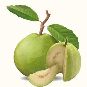 Guava images clipart png transparent download Free Guava Cliparts, Download Free Clip Art, Free Clip Art on ... png transparent download