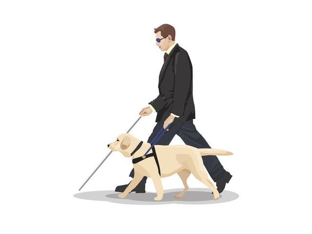 Clipart public service general orders svg royalty free stock What Assistance Dogs Can and Can\'t Do | Psychology Today svg royalty free stock