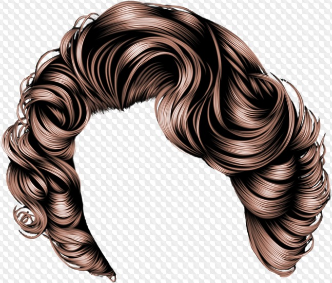 Library of hair styles image transparent stock for photoshop
