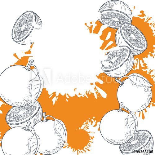 Half circle of hands black and white clipart clip art download Oranges cut half hand drawing in black and white colors vector ... clip art download
