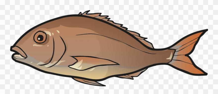 Halibut clipart png transparent Fish - Halibut Clipart (#3254254) - PinClipart png transparent