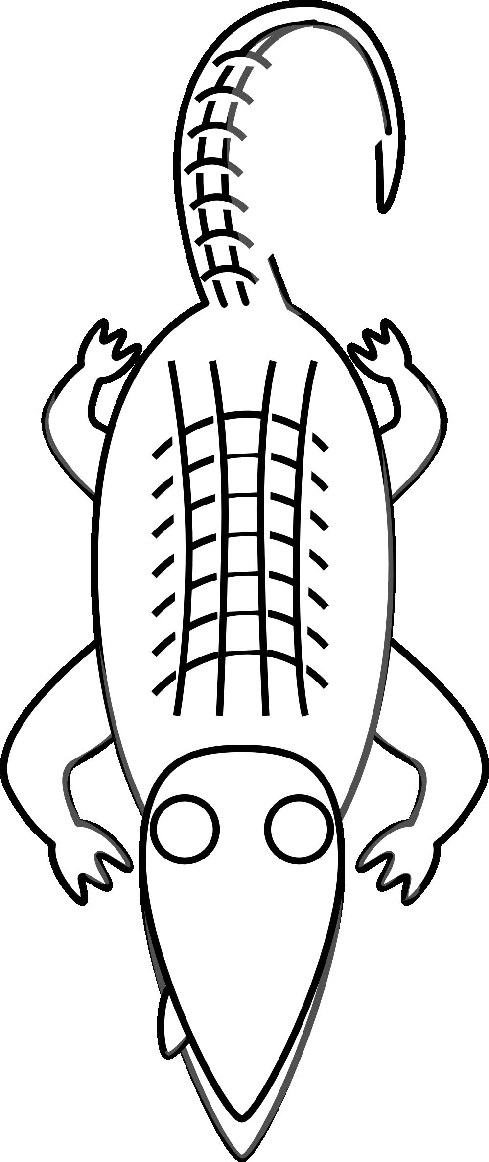 Halloween alligator clipart clip art black and white Alligator Clipart Black And White   Clipart Panda - Free Clipart Images clip art black and white