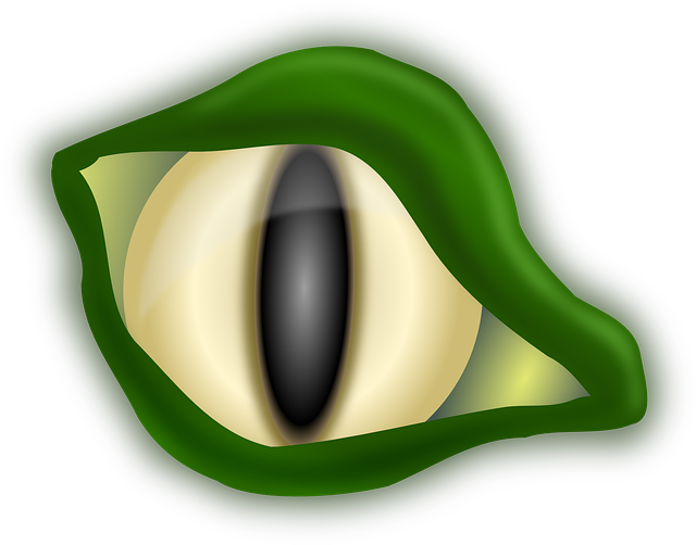 Halloween alligator clipart png stock Free Image on Pixabay - Alligator, Crocodile, Eye, Green   Pinterest ... png stock