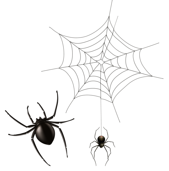 Halloween chandelier clipart banner freeuse library Spider and Cobweb PNG Clipart Image | Halloween | Pinterest ... banner freeuse library