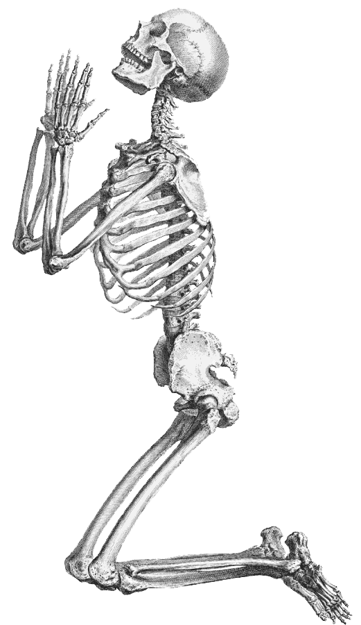 Halloween skeleton clipart banner library stock Halloween Skeleton Transparent Background | PNG Mart banner library stock