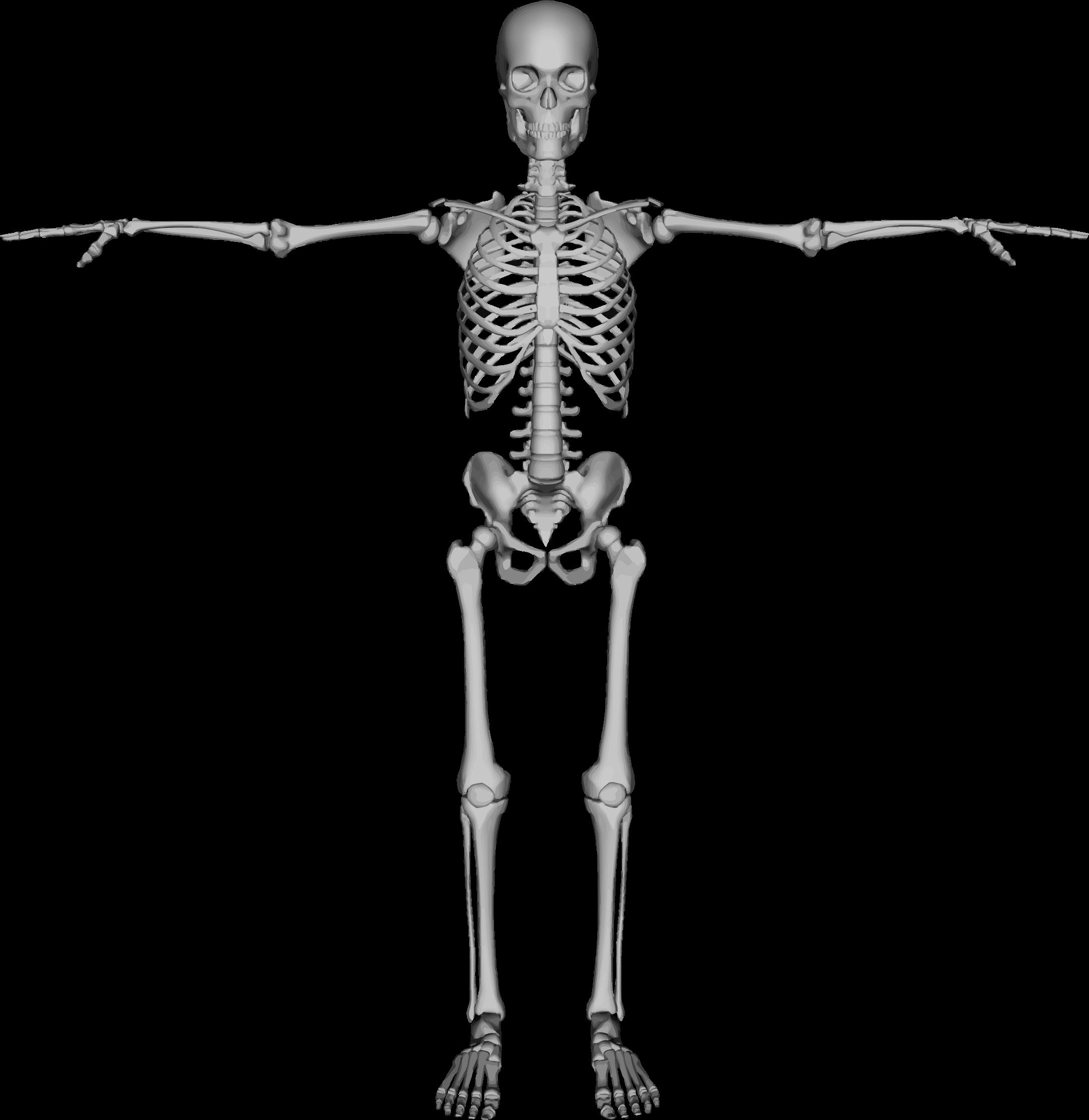 Halloween clipart skeleton image library stock Clipart - Skeleton With Arms Out image library stock