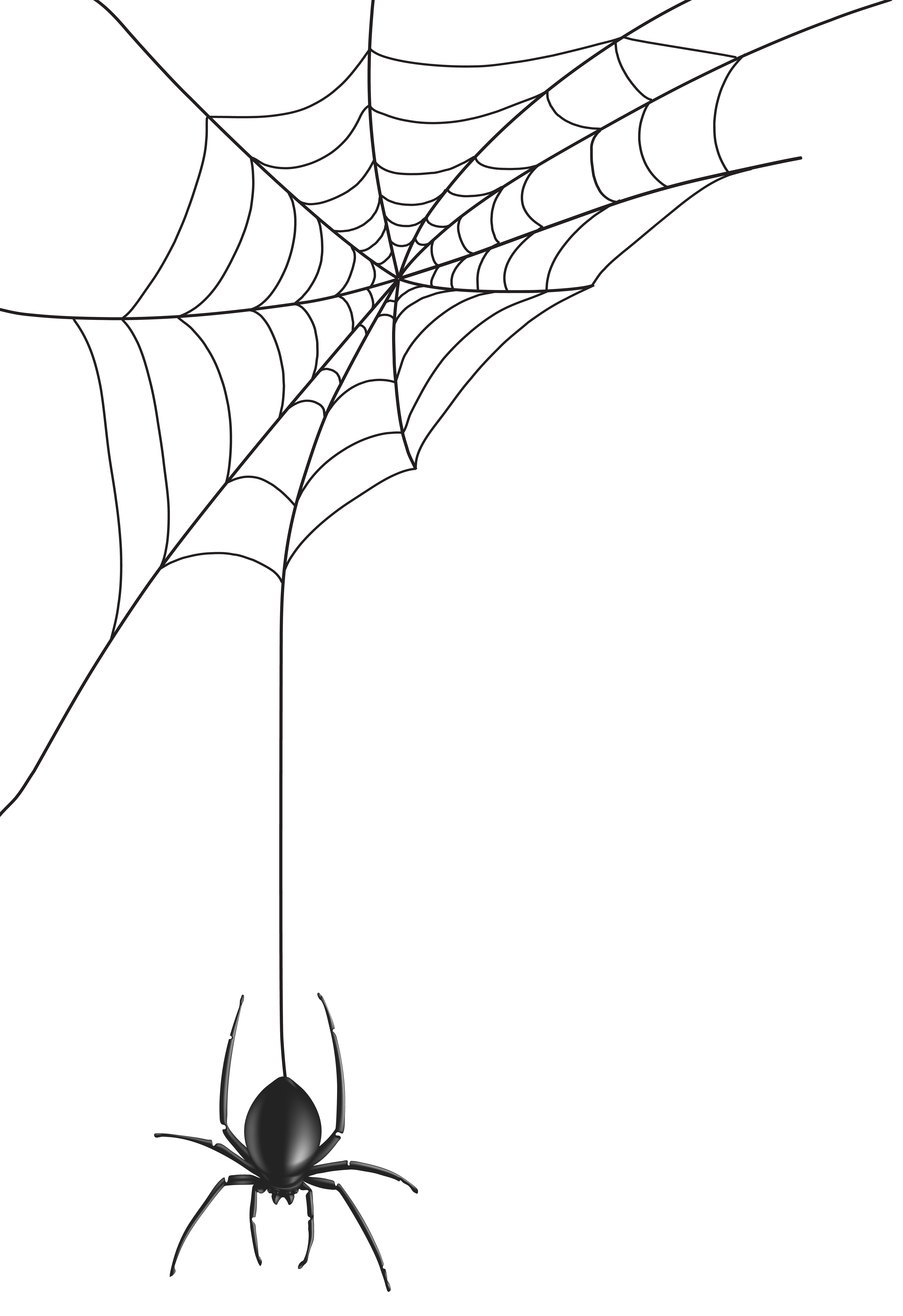 Halloween spiders hanging from web clipart picture library download Spider Web PNG Clip Art Image | Gallery Yopriceville - High-Quality ... picture library download