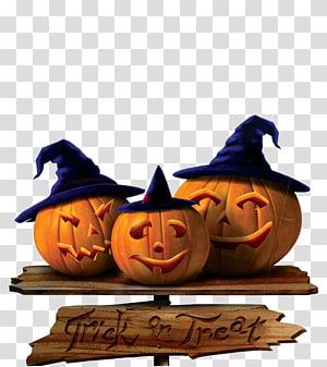 Halloween jack o lantern bride and groom clipart jpg library download Cat Pumpkin Halloween Jack-o-lantern , pumpkin transparent ... jpg library download