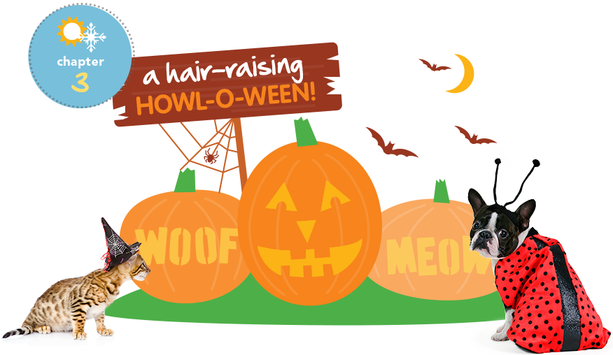 Halloween safety tips clipart svg library stock Halloween Pet Safety Tips | Halloween Dog Safety | Petplan | Helpful ... svg library stock