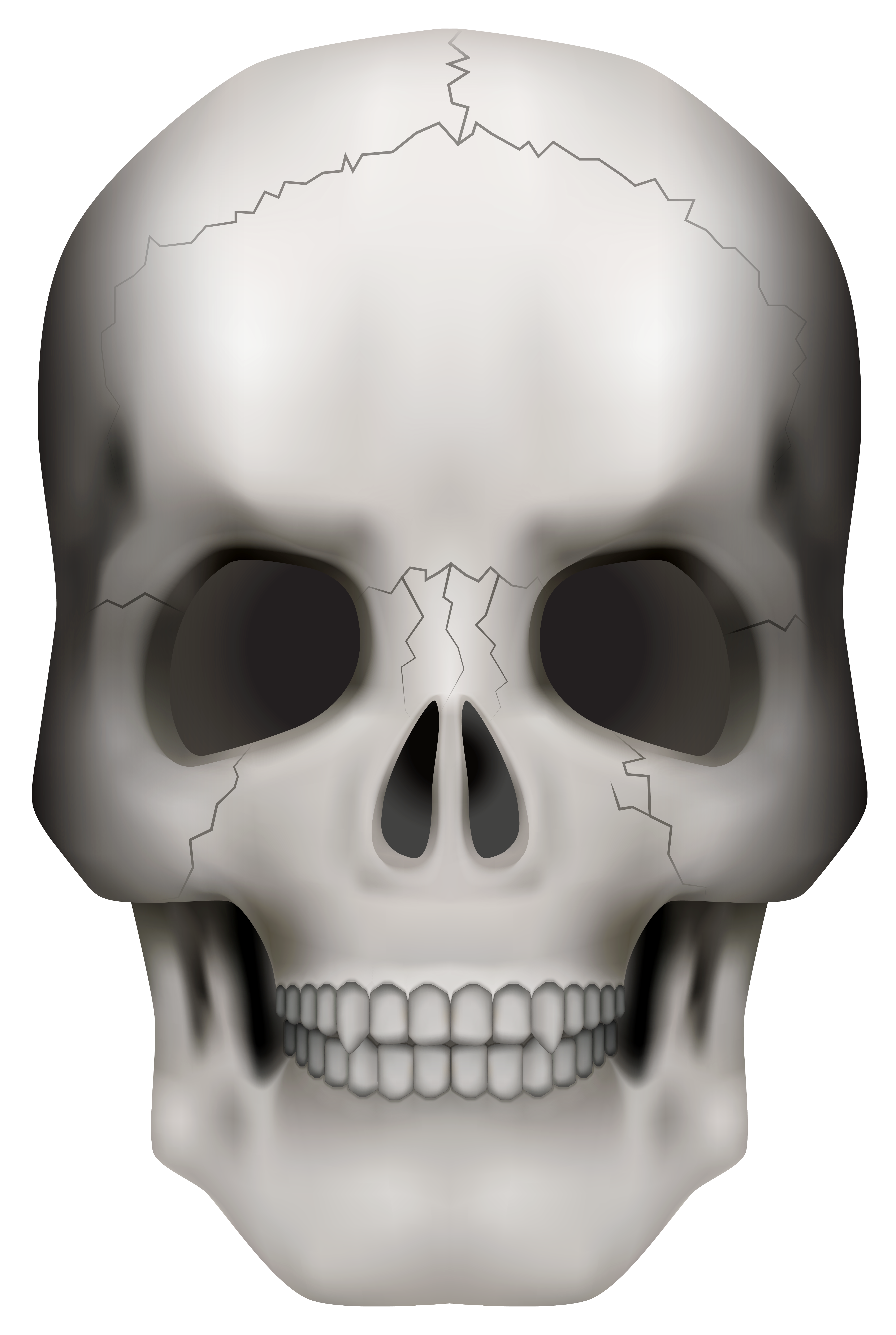 Halloween skeleton head clipart image library Skull PNG Clipart Image | Gallery Yopriceville - High-Quality ... image library